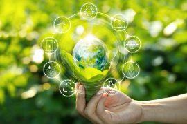 IBM Sostenibiliad