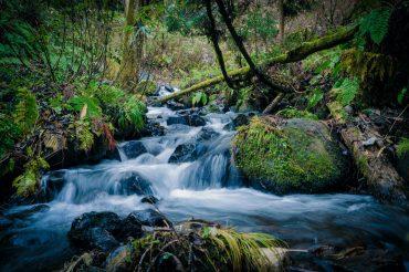 Microsoft reabastecerá más agua de la que consume para el 2030